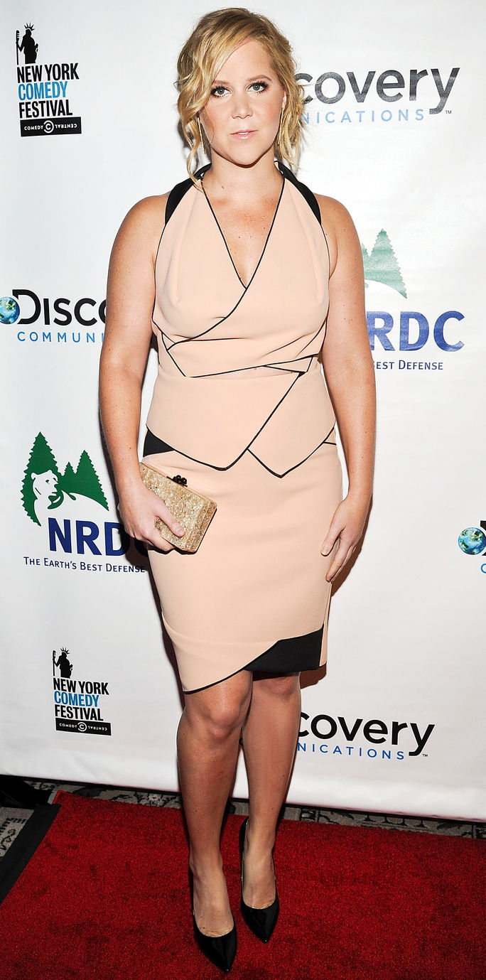 2014 NRDC Night Of Comedy