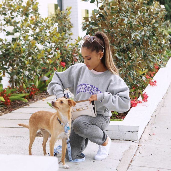 Ариана Grande and Toulouse